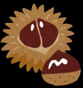 栗にトゲトゲがあるのはなぜ?実は種で皮は実だったという新事実!
