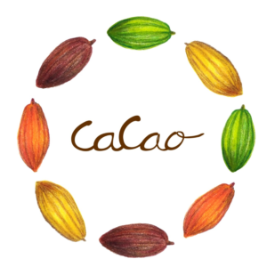 カカオバター、カカオニブ、カカオマス、カカオリカーの違いは何?